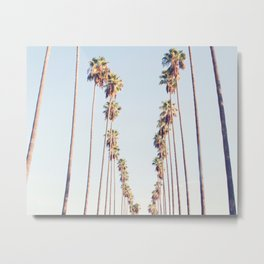 Palm tree stripes Metal Print