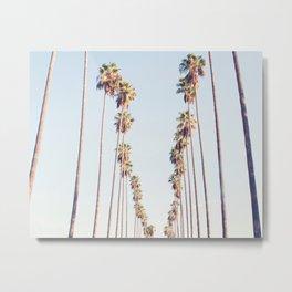 Palm tree stripes Metal Print