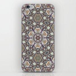 Mandala Of The Earth iPhone Skin