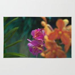 Orchid - Vanda Tricolor Rug