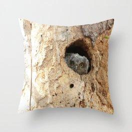 Baby screech owl Throw Pillow