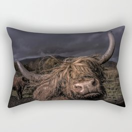 WHEN I VISIT THE NORTH OF SCOTLAND I CAME ACROSS THESE SCOTTISH HIGHLANDERS Rectangular Pillow