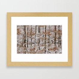 Hay Bluff Winter larch Framed Art Print