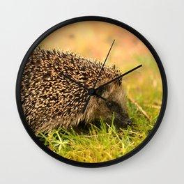 Our little Hedgehog Wall Clock