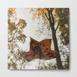 A Leaf In A Million Metal Print