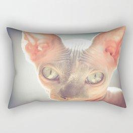 Floyd The Cat Rectangular Pillow