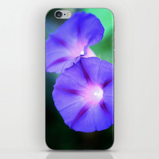 Morning glories iPhone & iPod Skin
