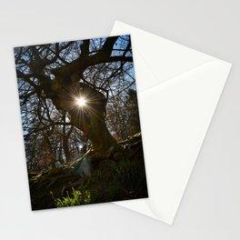 Tree Portal Stationery Cards