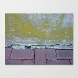 Brick and Lychen Canvas Print