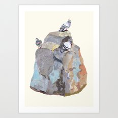 The Pigeon on a Rock Art Print