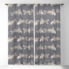 Leopard catfish Sheer Curtain