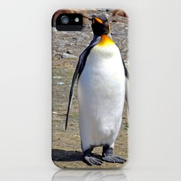 King Penguin and Chick iPhone Case