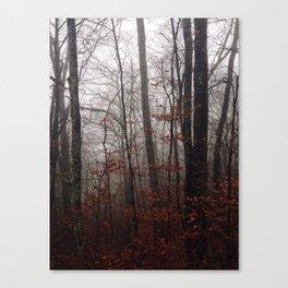 Great Smokey Mountains 1 Canvas Print