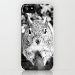 Climbing Squirrel - by Cheryl Gerhard iPhone Case