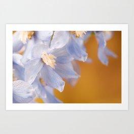 Delphinium Flowers 2 Art Print