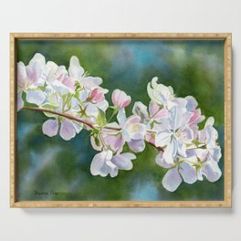 Apple Blossoms with Blue Green Backlground Serving Tray