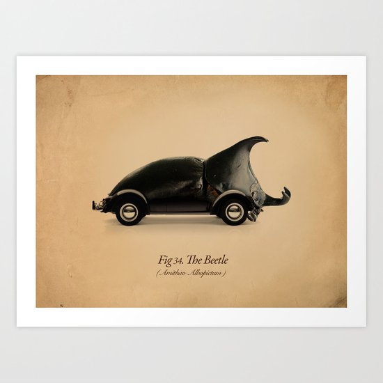 Fig. 34 The Beetle Art Print