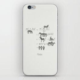 Alzebra iPhone Skin