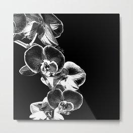 Orchid I Metal Print
