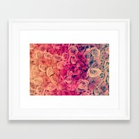 roses Framed Art Prints featuring Roses by Msimioni