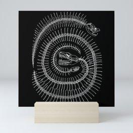 Spiral Mini Art Print