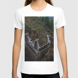 Leemer Lookout T-shirt