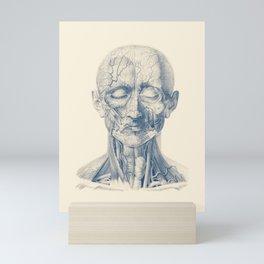 Facial Veins and Arteries  - Vintage Anatomy Mini Art Print