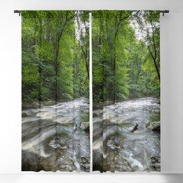 Appalachian Adventure - Ricketts Glen State Park Blackout Curtain
