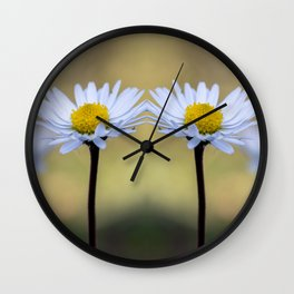 Mirroring delicate daisy flowers Wall Clock
