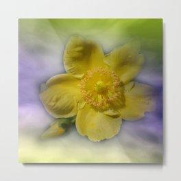 yellow summerfeeling Metal Print