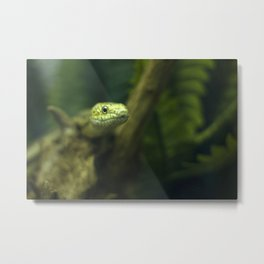 In your face! Metal Print