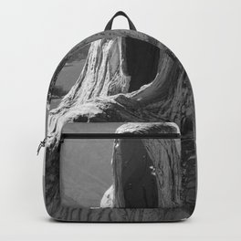 Lake Como, Ghost Sculpture over looking Italian Lake black and white photograph / art photography Backpack