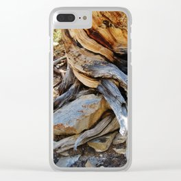 Roots and Stones Clear iPhone Case