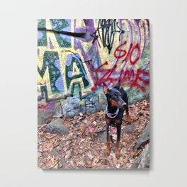 Doberman Puppy (Dog) Metal Print