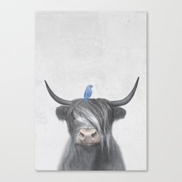 Scottish Cow & Blue Bird Canvas Print