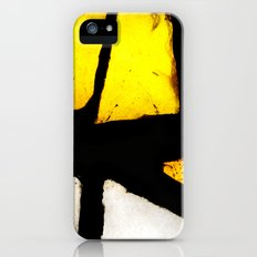 Light and Color II iPhone (5, 5s) Slim Case