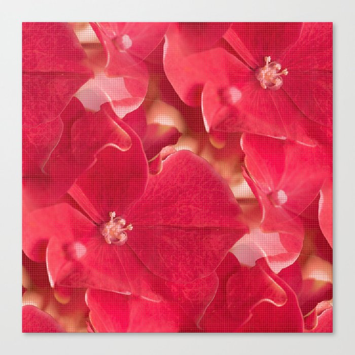 Red hydrangea flowers #decor #society6 Canvas Print