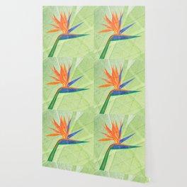 Bird of Paradise Flower Wallpaper