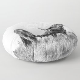 Northern Coo Floor Pillow