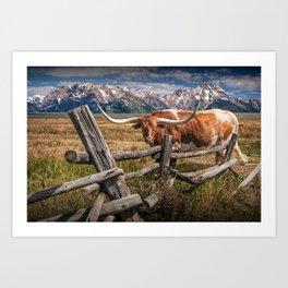 Texas Longhorn Steer with Wood Log Fence in Wyoming Pasture Kunstdrucke