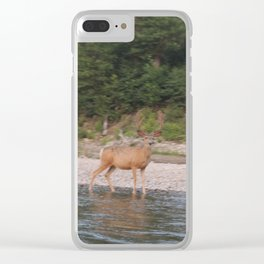 Mule Deer Clear iPhone Case