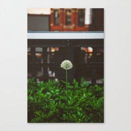 New York Garden Canvas Print