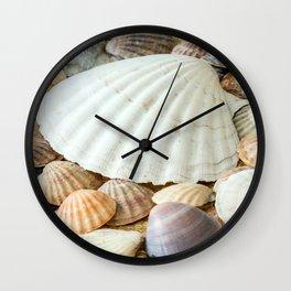 Sea Shells  -  Ocean, Sea, Nature Wall Clock