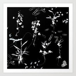 Plants & Paper clips Photogram Art Print