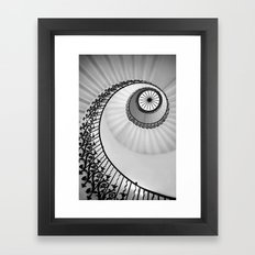 Ammonite Framed Art Print