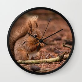 Nature woodland animals Red squirrel by a log Wall Clock