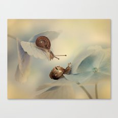 Snails on hydrangea Canvas Print