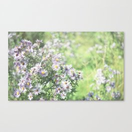 Flowers and Stuff Canvas Print