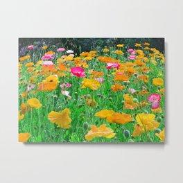 Poppy Field in Spring Metal Print