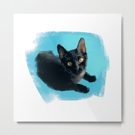 Black Cat (of the Shelter) Metal Print